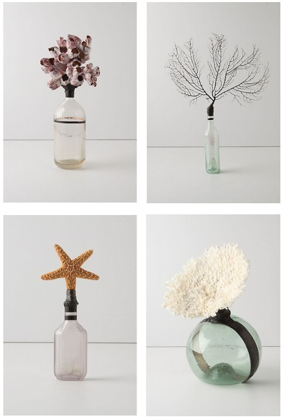 anthropologie-beach-find-bottle-barnacle
