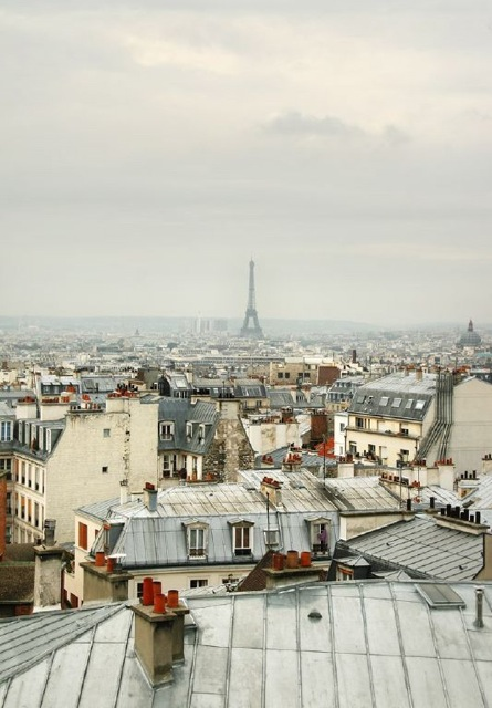 Paris-rooftops-photograph-2