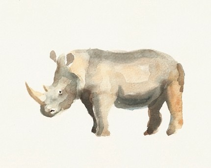 animal-watercolor-1