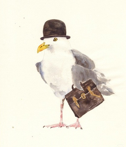 english-eccentric-seagull-illustration