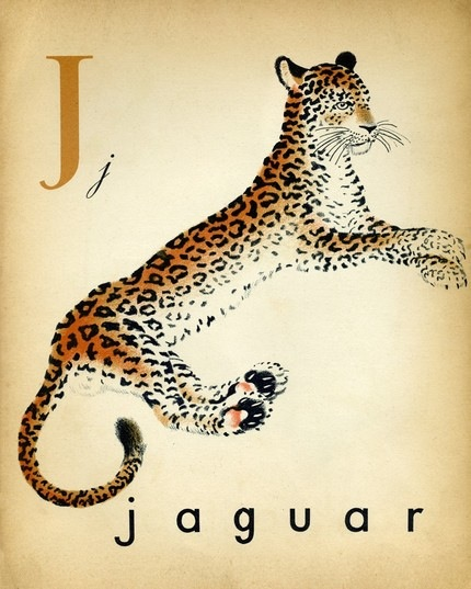 french-alaphabet-print-1-vintage-leopard-jaguar-illustration-print