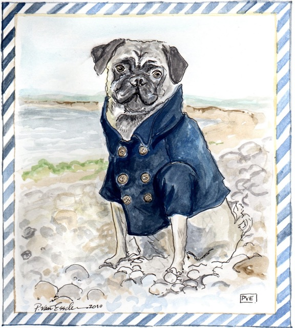 Pug-Dog-By-Sea-Beach-Pea-Coat