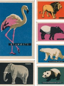 A Matchbox Zoo