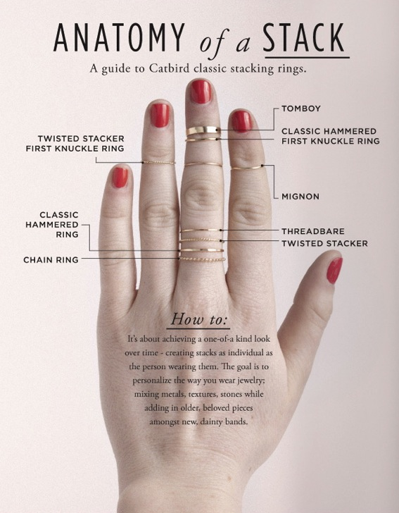 anatomy_of_a_stack_cat-bird-knuckle-rings