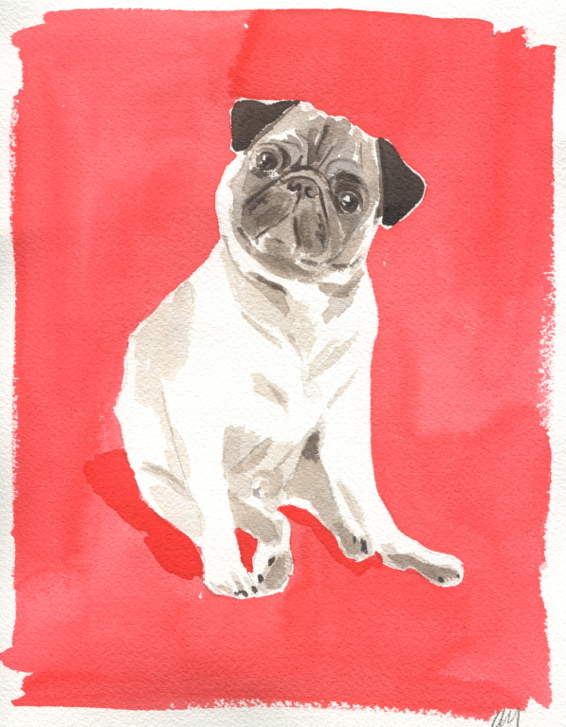 alfred-armour-pug-katie-armour-the-neo-traditionalist-caitlin-mcgauley-custom-pet-portrait-watercolor-painting