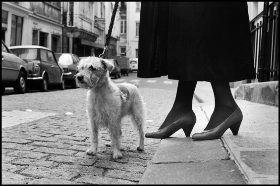 elliott-erwitt-paris-10