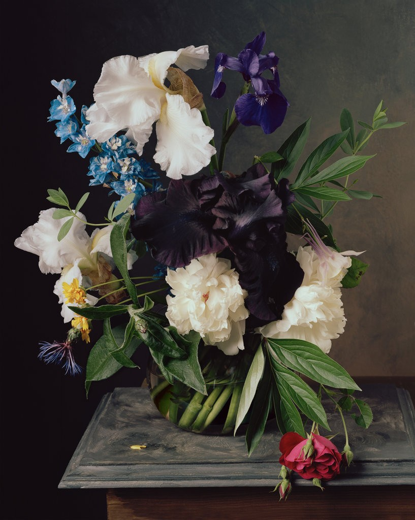 floral-still-life-sharon-core-photography-old-masters-paintings-2