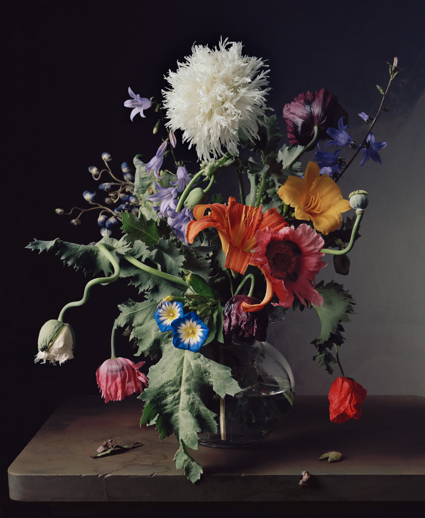 Floral Still-Lifes By Sharon Core
