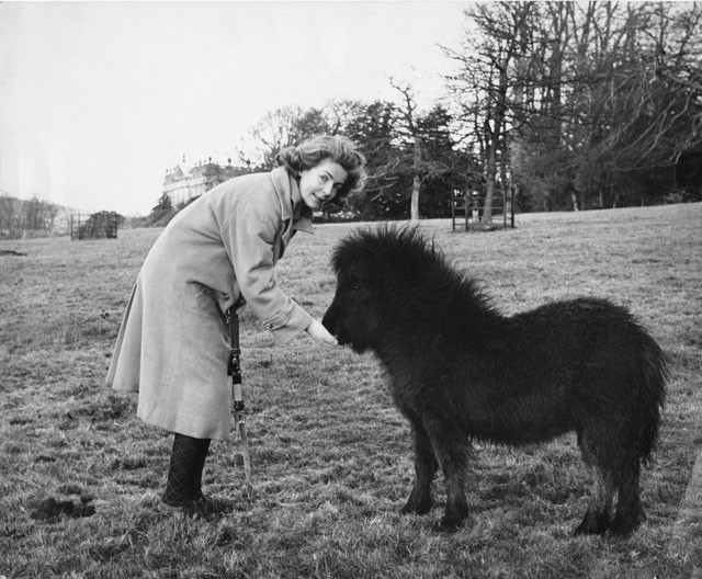 deborah-duchess-of-devonshire-mitford-sothebys-auction-2