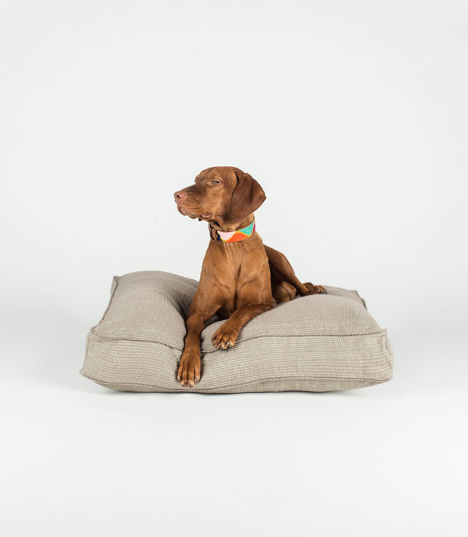 filly-dog-bed-etsy-1