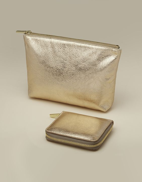 cuyana-metallic-shimmer-wallet-leather-pouch