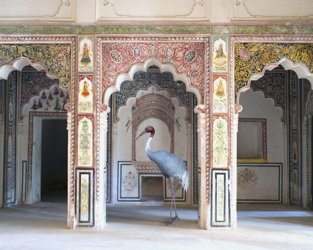 india-song-karen-knorr-photography-8