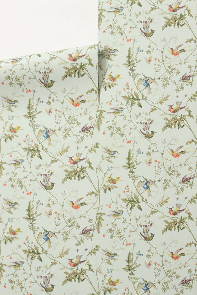 hummingbird-wallpaper-cole-and-sons