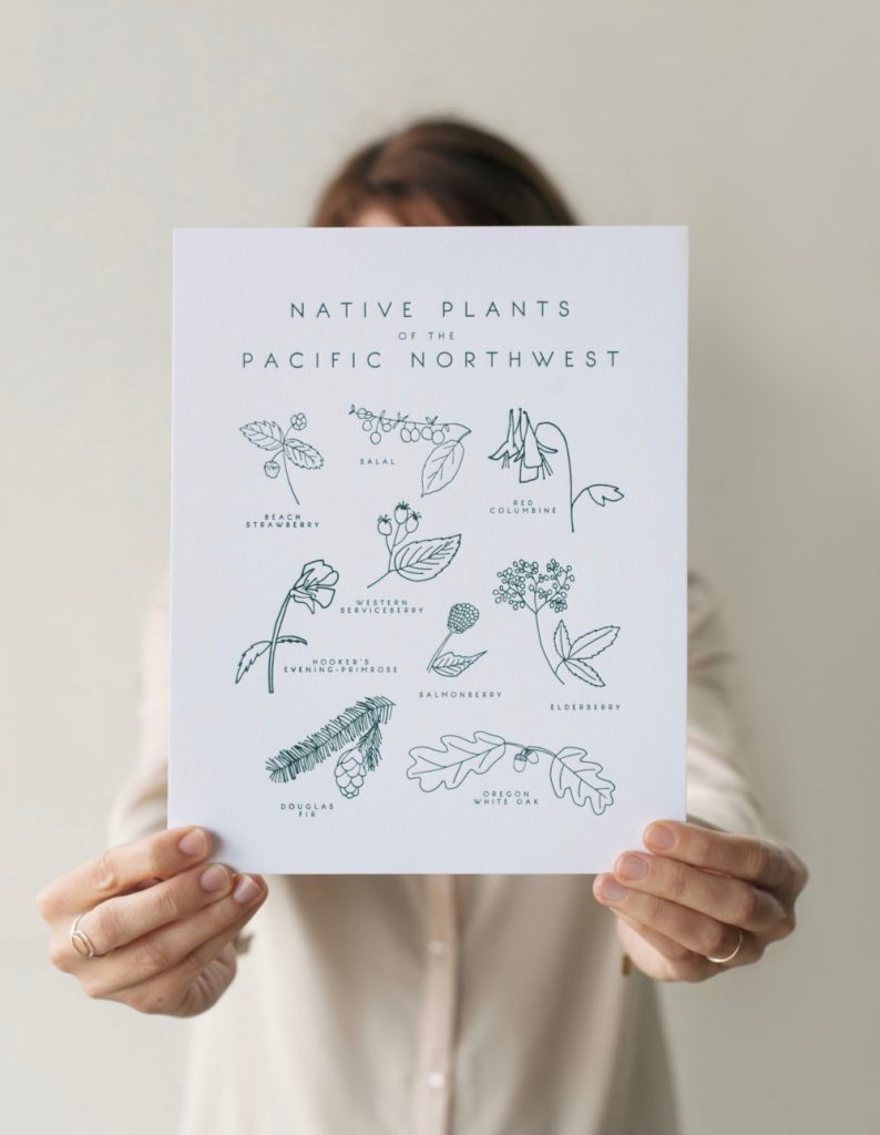 native-plants-of-the-pacific-northwest