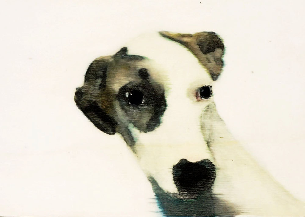 dog-portrait-wilma-wau-etsy-art-painting-4