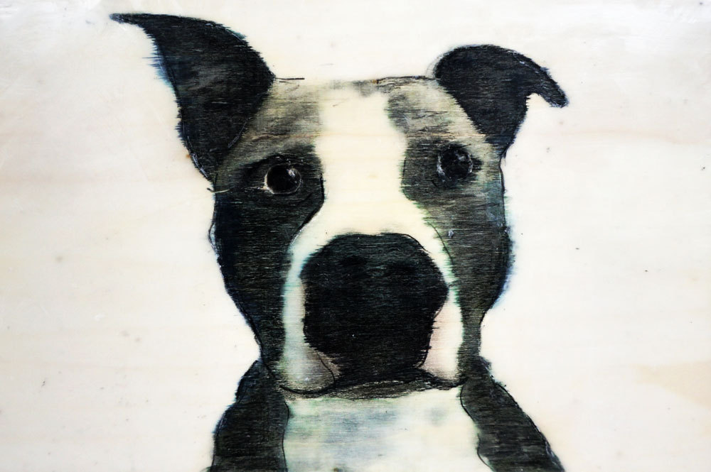 dog-portrait-wilma-wau-etsy-art-painting-6