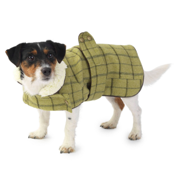 green-tweed-dog-jacket