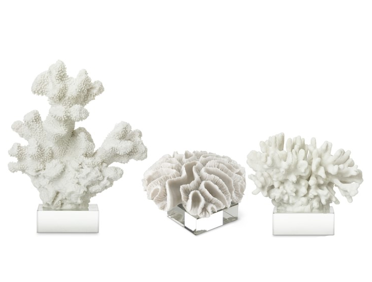 white-coral-on-glass-stand