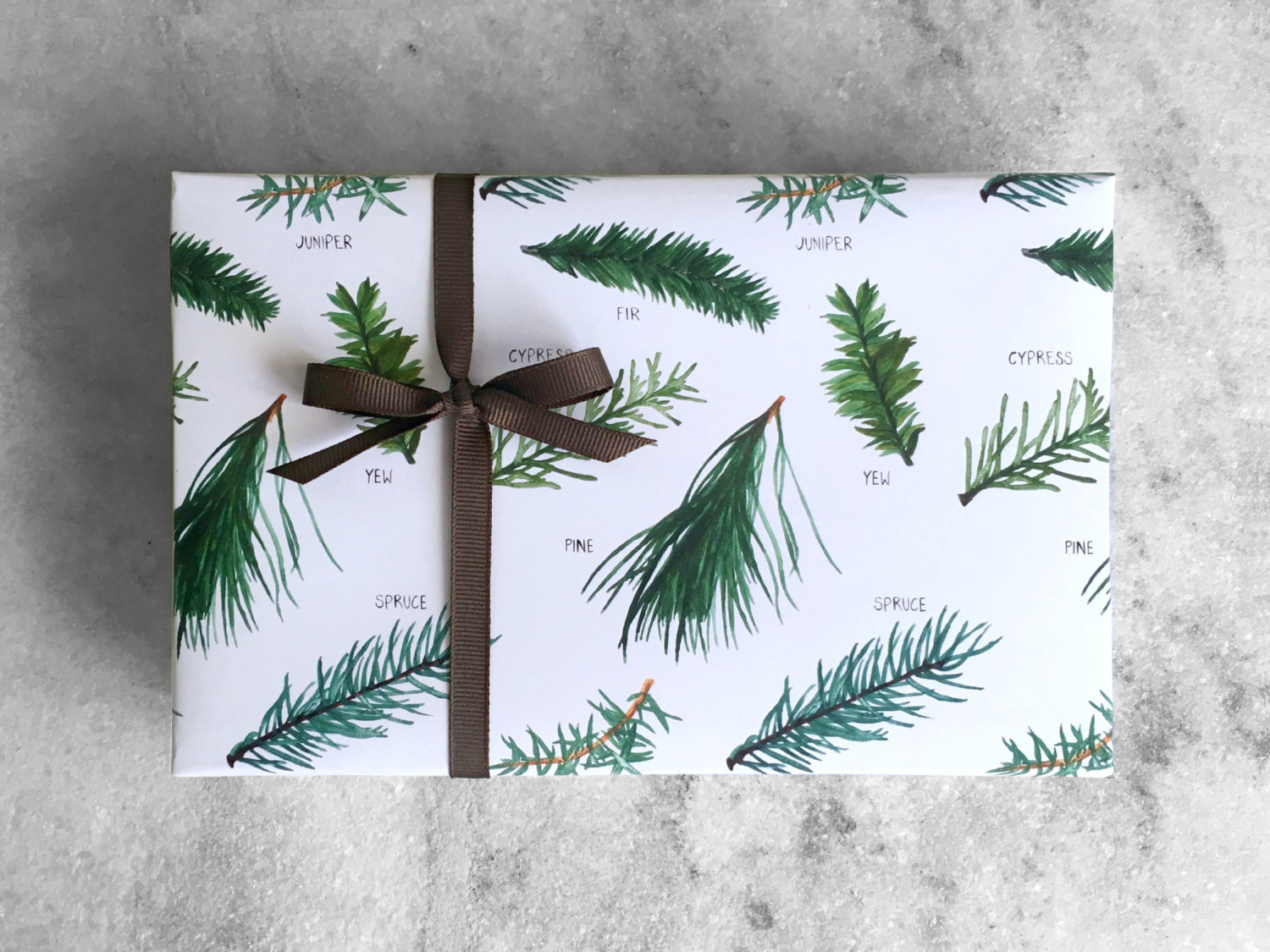 evergreen-tree-christmas-wrapping-paper-gift
