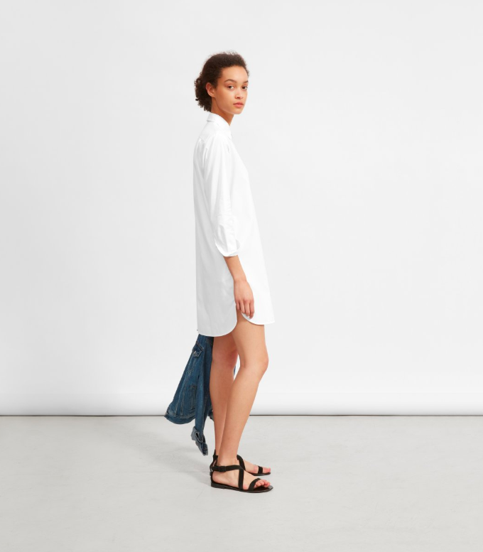 White Cotton Shirtdress Everlane