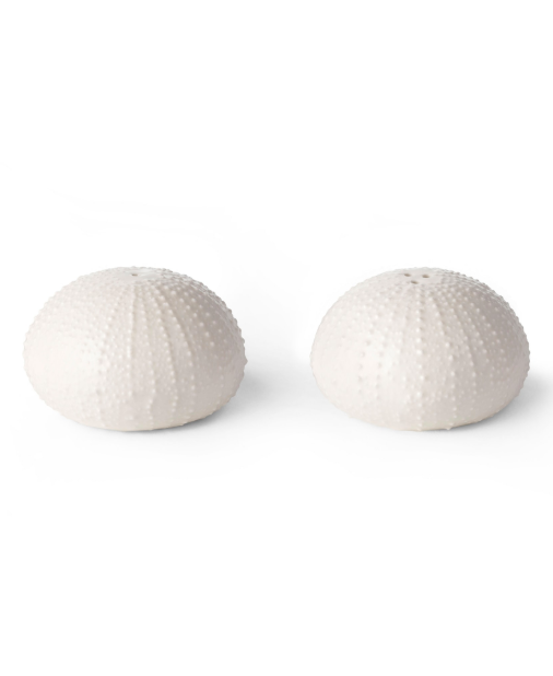 White Sea Urchin Salt and Pepper Shakers