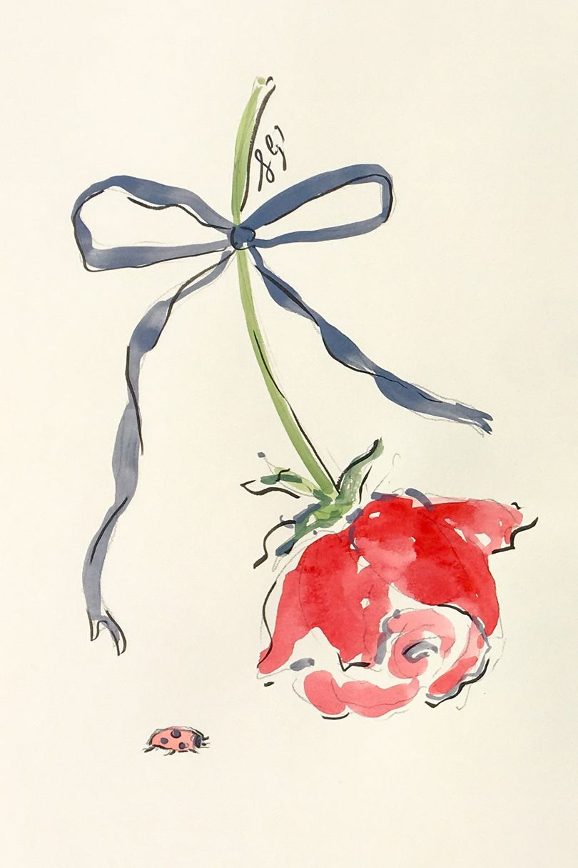 Susannah Garrod Illustration Rose Lady Bug with Bow