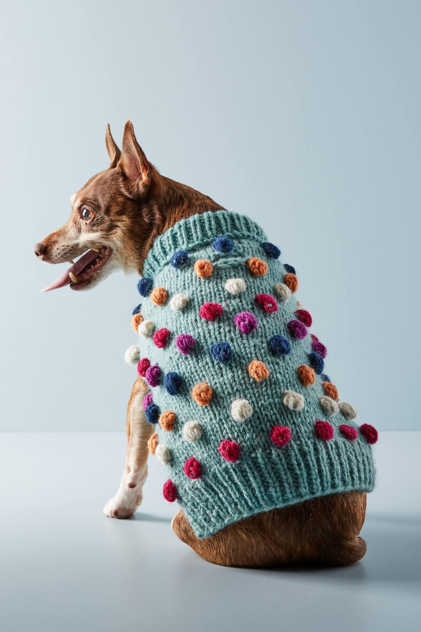 Pom Pom Dog Sweater