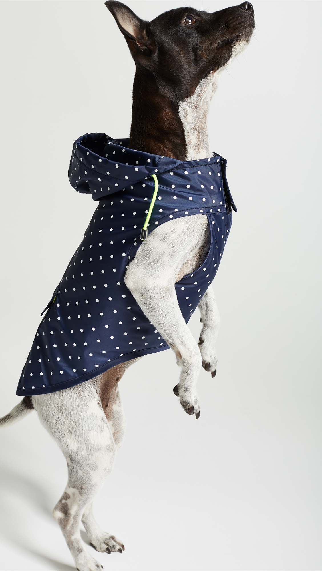 Polka Dot Rain Jacket