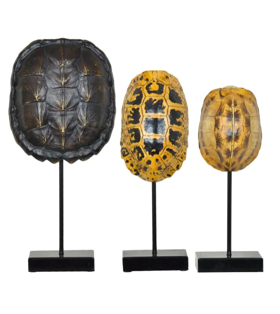Faux Tortoise Turtle Shells On Stands