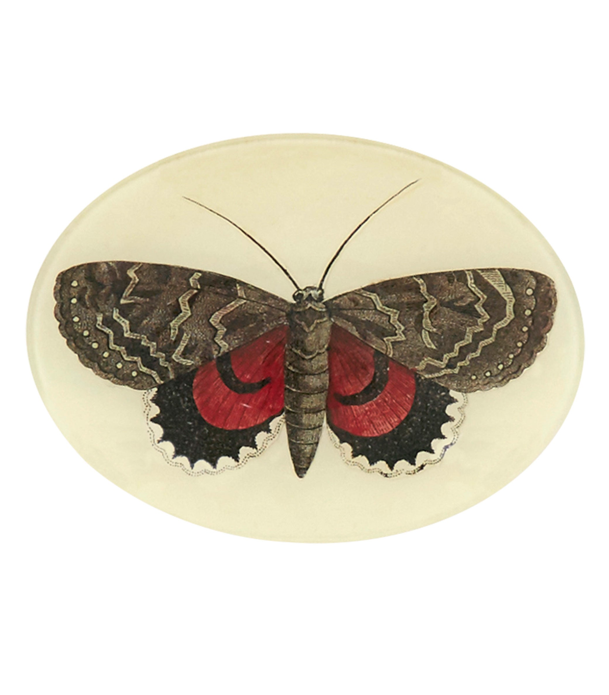 Red and Brown Butterfly Serving Tray