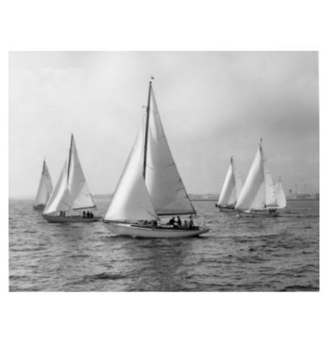 Sailboats in the Sea Art Print