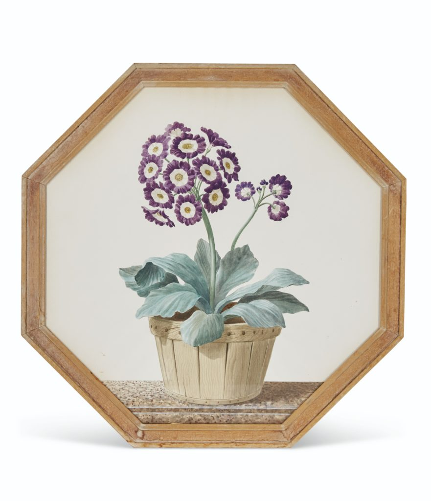 Auriculas Framed Floral Watercolors Lee Radziwill Auction Christie's