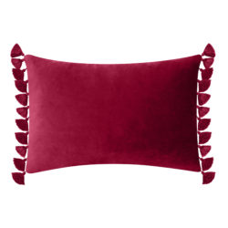Tassled Velvet Decorative Throw