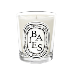 Diptyque Berry Scented Candle