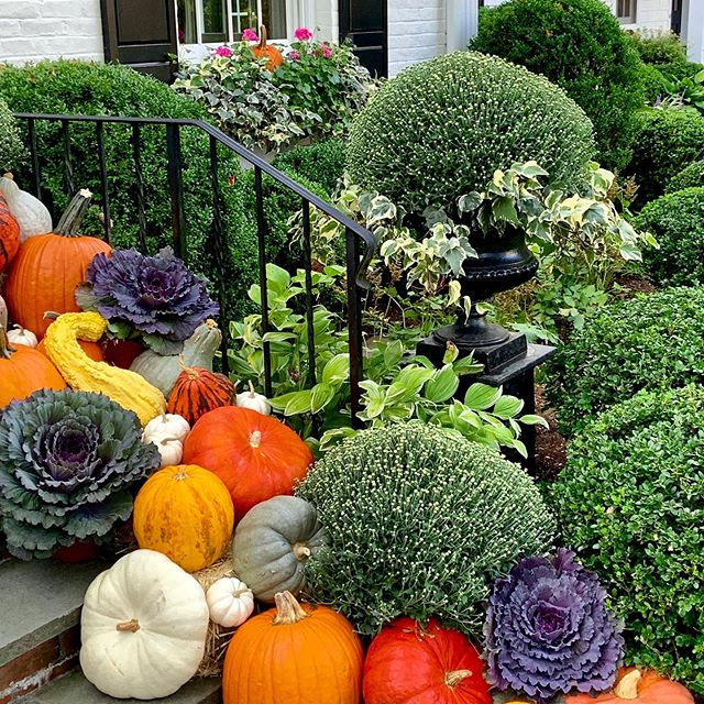 Pumpkins and gourds Halloween autumn decor front porch stoop stairs